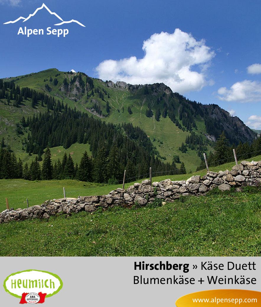 Käse-Duett Komposition Hirschberg