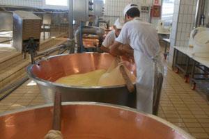 Produktion vom Trentingrana Grana Padano Trentino D.O.P.
